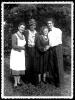 Lovorjev venec 1951